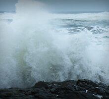 Splash on the Rocks by Annie Underwood