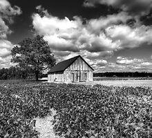 An American Farm by capturedjourney