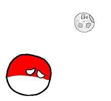 PolandBall by CandyBubble