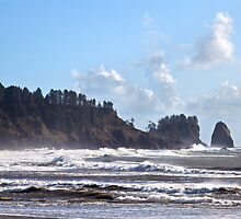 Windy Day at La Push Beach by Barb White