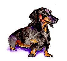 Weenie Dog by Tea Silvestre Godfrey