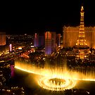 Las Vegas Lights by Tracy Riddell
