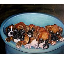 Funny Puppies oil painting Photographic Print