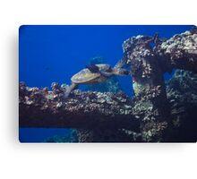Diving Maui Canvas Print