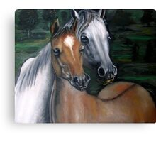 Two horses oil painting  Canvas Print