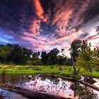 A Maryland Swamp - Sunset by capturedjourney