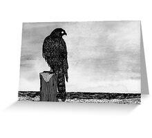 Watchful bird Greeting Card