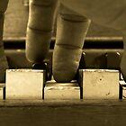 Sepia Sonata by 6strings