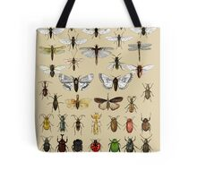 Entomology Insect studies collection  Tote Bag