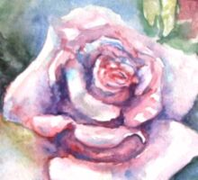 Pink Rose watercolor painting  Sticker