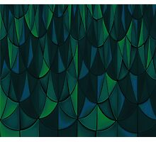 Geometric Sea Scales Photographic Print