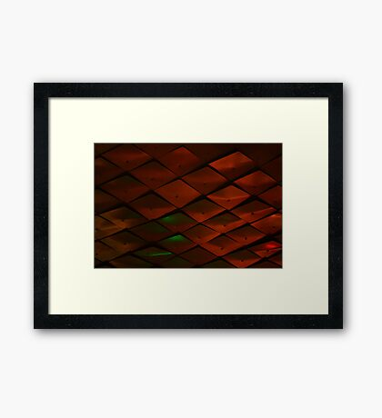 Here be Scales  Framed Print