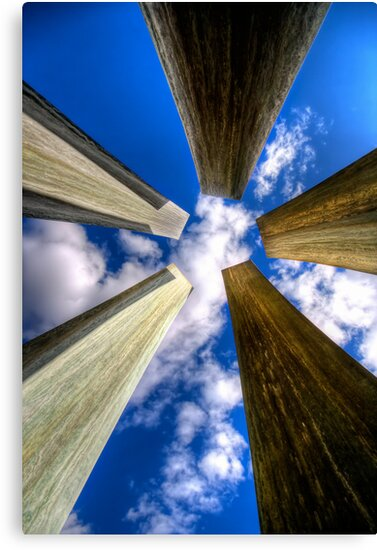 Looking Up by Bob Larson