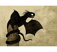 Watchtower Dragon Photographic Print