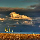 Sunset Harbor Race by Tim Mannle