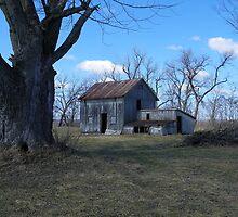 Shady Oaks Hollow by wiscbackroadz