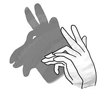 Hand Silhouette Billy Goat Gray Photographic Print