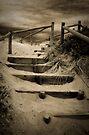 Wooden Stairs by Pene Stevens