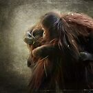 Can an Orangutan Like Me Go for a Piggy Back Ride? by vigor