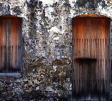 door and window by seemorepr