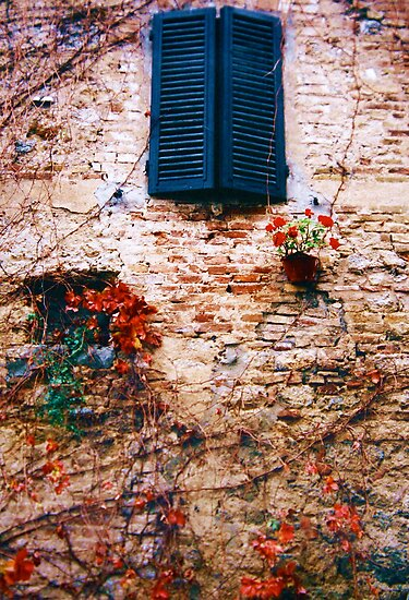 A Window In San Gimignano Tuscany Italy by Ronald Rockman