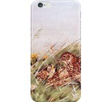 Skylarks In Field Scene iPhone Case/Skin