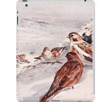 Winter Scene with Snow Buntings iPad Case/Skin