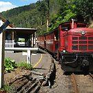 Walhalla Train,Thompson Station by Joe Mortelliti