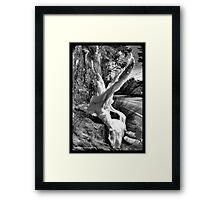 Mother Nature's Sculptures Framed Print