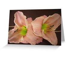 Two Peach Daylilies. Greeting Card