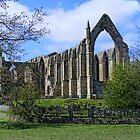 Bolton Abbey by Ray Clarke