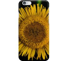 Yellow sun flower iPhone Case/Skin