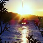 Sunset at Nelsons Bay, NSW by Darsha Gillmore