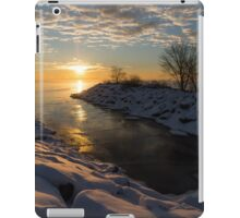 Sunshine on the Ice - Lake Ontario, Toronto, Canada iPad Case/Skin