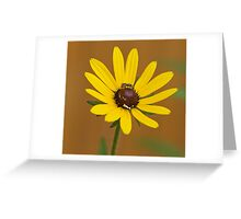 sunny delight on a dreary day Greeting Card