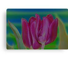 solarized tulips Canvas Print