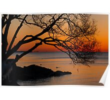 Colorful Quiet Sunrise on the Lake  Poster