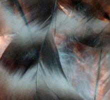 Backlit Feathers Sticker