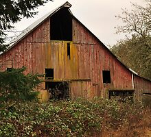 Barn on old dairy farm near Dallas Or. by pdsfotoart