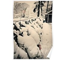 Snow Bouys Poster