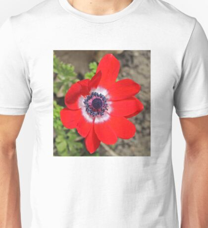Vivid Red Anemone flower Unisex T-Shirt