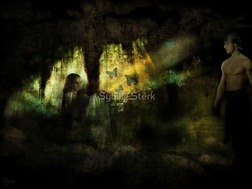 The Visitor by Sybille Sterk