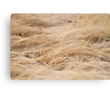 Relaxed Field of Grass Canvas Print