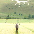 White Horse by SpiralPrints