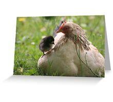 Just Winging it! Greeting Card
