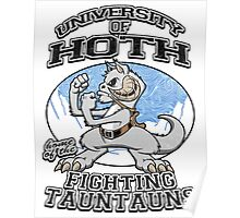 Fighting Tauntauns Poster