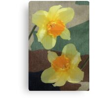 Bi Colour Daffodils Canvas Print