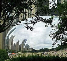 FRAMING THE BEAN by Tania Richley