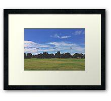 UC Davis Framed Print