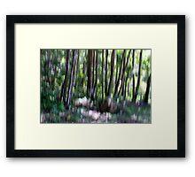 Light strokes Framed Print